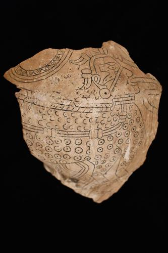 Fragment of engraved shell cup with image of Underwater Panther